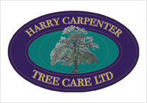 Harry Carpenter Tree Care